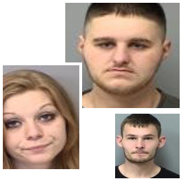Drug and firearms violations lead to three arrests